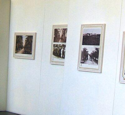 תמונות על קיר